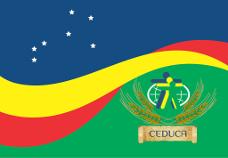 Bandeira228